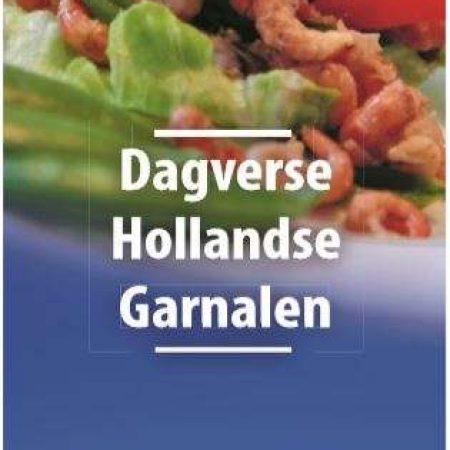 Hollandse VD119-3