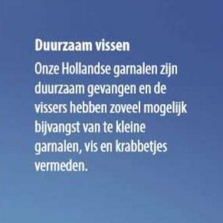 Hollandse VD119-4